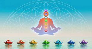 Balancing Your Root Chakra