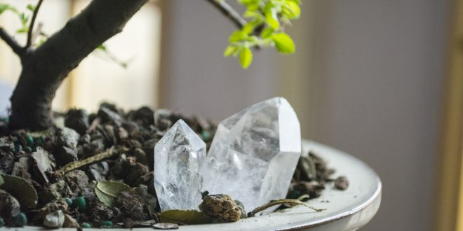 Using Crystals to Help Plants